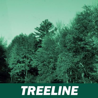 Picture of TREELINE MEMBERSHIP