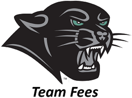 Picture for category Team Fees